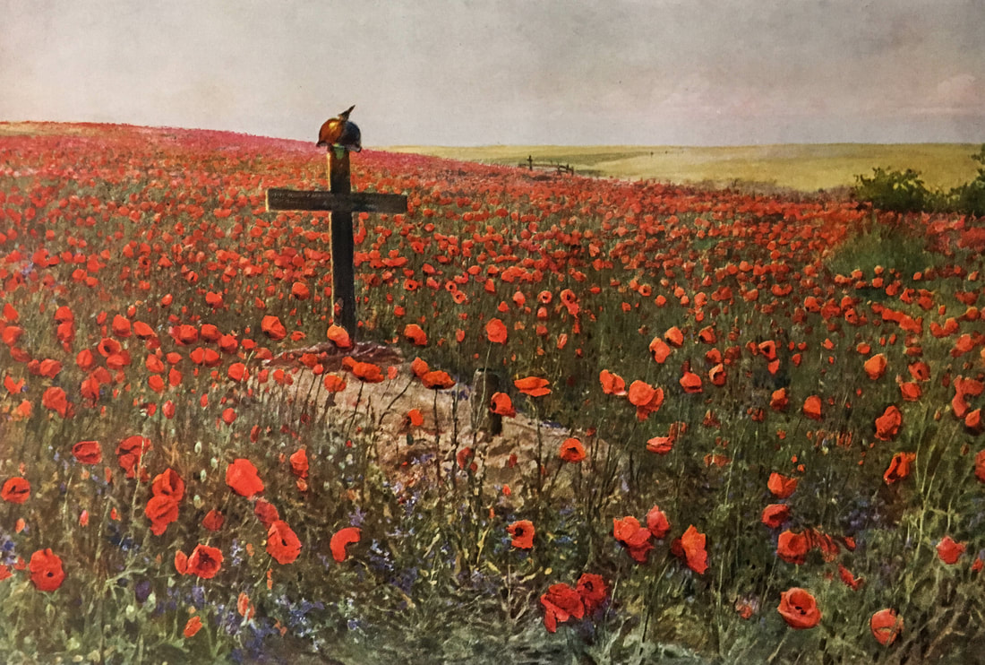 Poppy field and grave